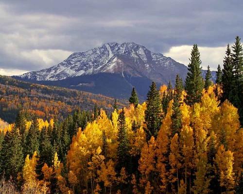 Colorado Fall Colors Jeffrey Sullivan Flickr