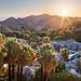 Canyon Oasis Light - Baja California