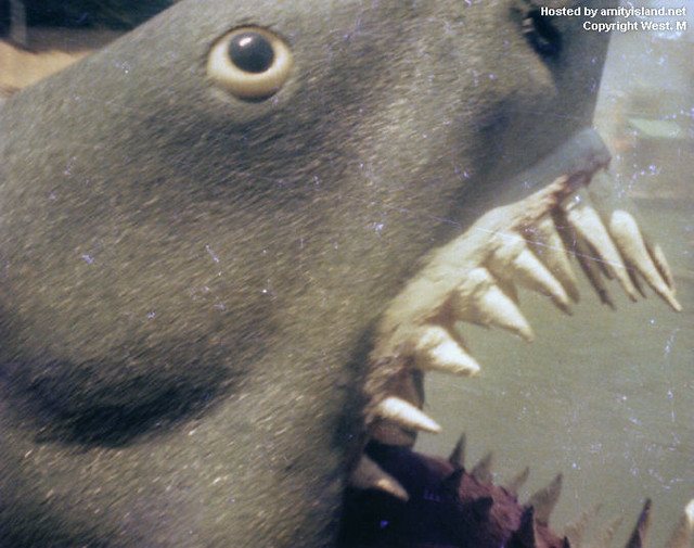 jaws universal studios hollywood for more info and