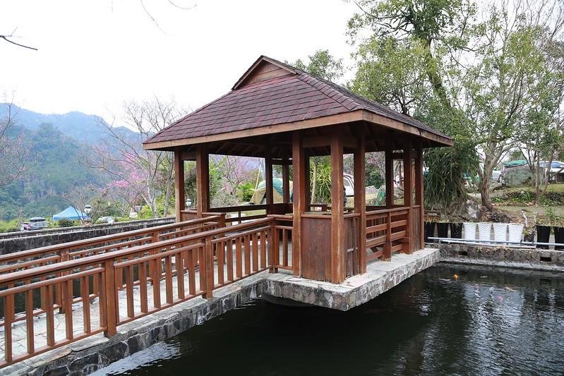 魚池和涼亭