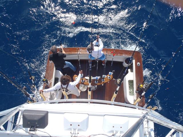 Miami beach fishing charter boat jumanji flickr photo for Miami beach fishing charters