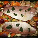 Red Snapper with Vegetables and Lemon Balm