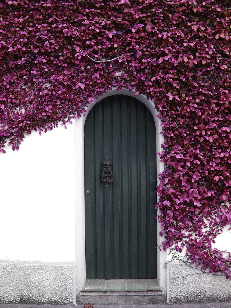 Garden door Would you like to open this door Pia