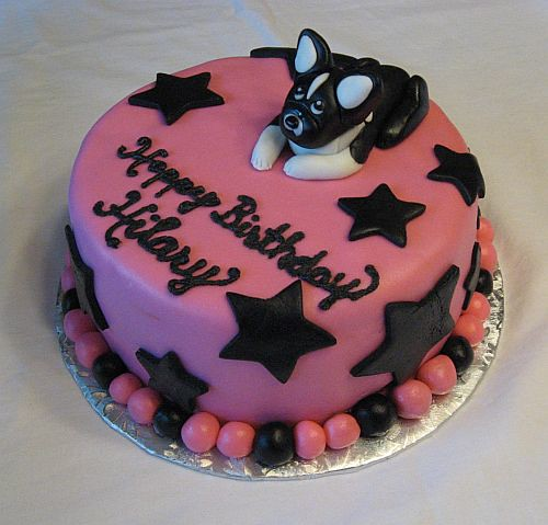 Boston Terrier York College Delivery Cake