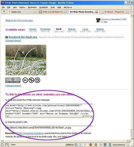 How to embed a flickr photo part 3 3 to embed the for Embed a forum into your website