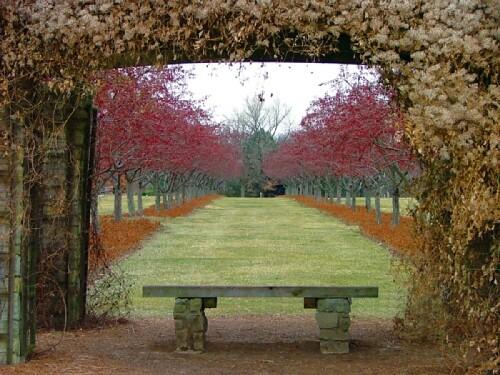Cox Arboretum Metropark Dayton Discoverohio Travel Flickr