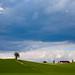 Farmland #5 (landskap Norge)