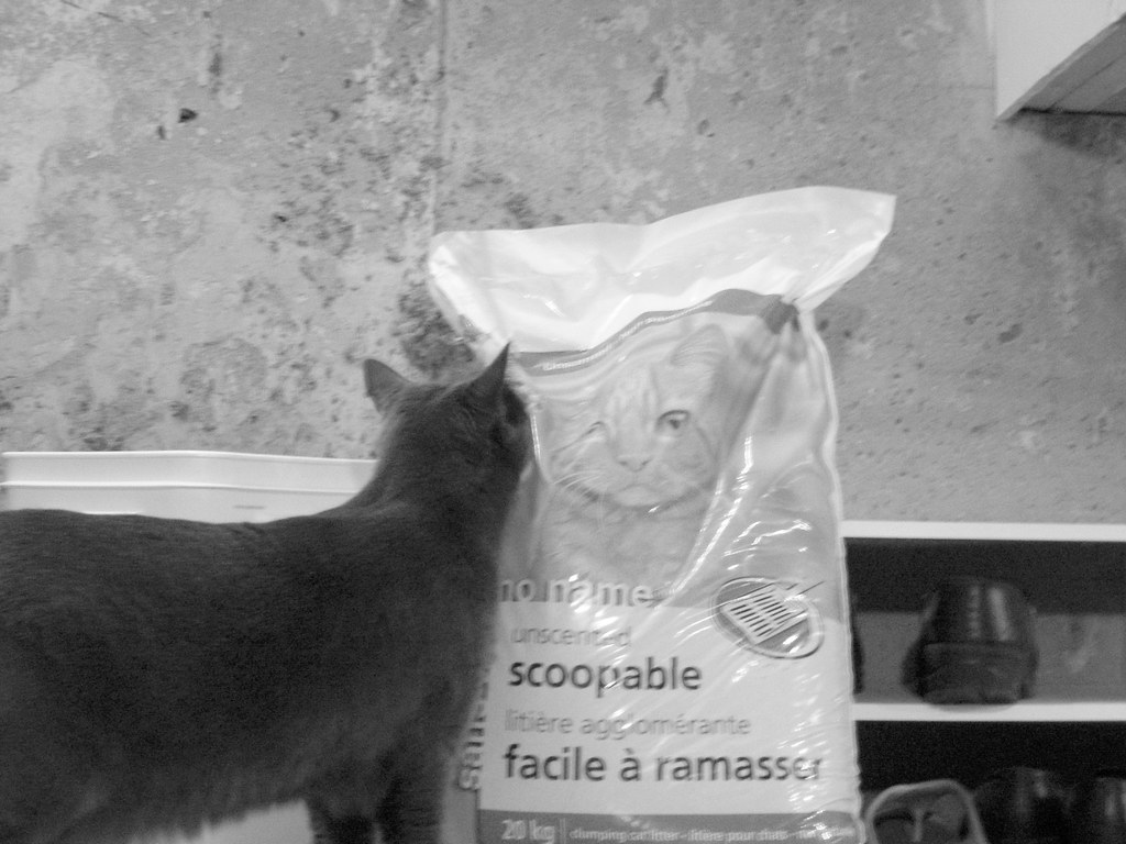 Image Result For Grey Bag