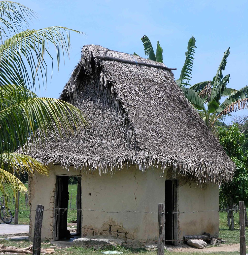 Thatched roof house with open doors casa con techo de pa for Techos de casas en honduras