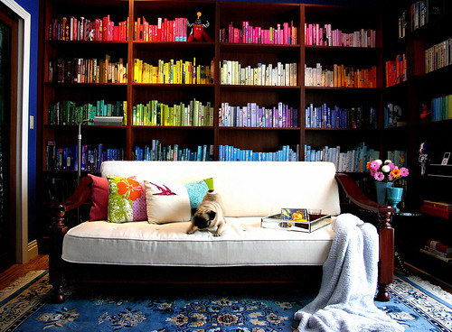 bookshelf spectrum, revisited | by chotda