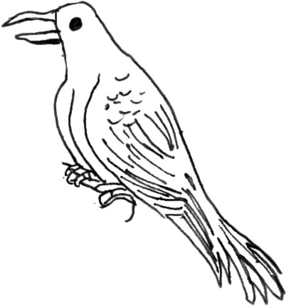 coloring pages crow - photo#11