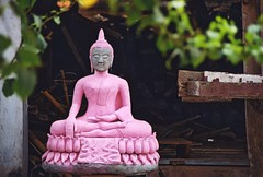 The Pink Buddha of Lao | by mandalaybus