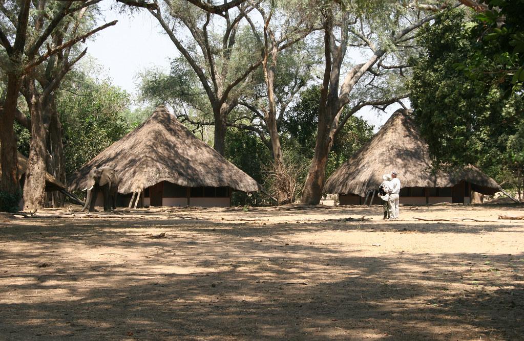Image result for MANA POOLS, ZIMBABWE