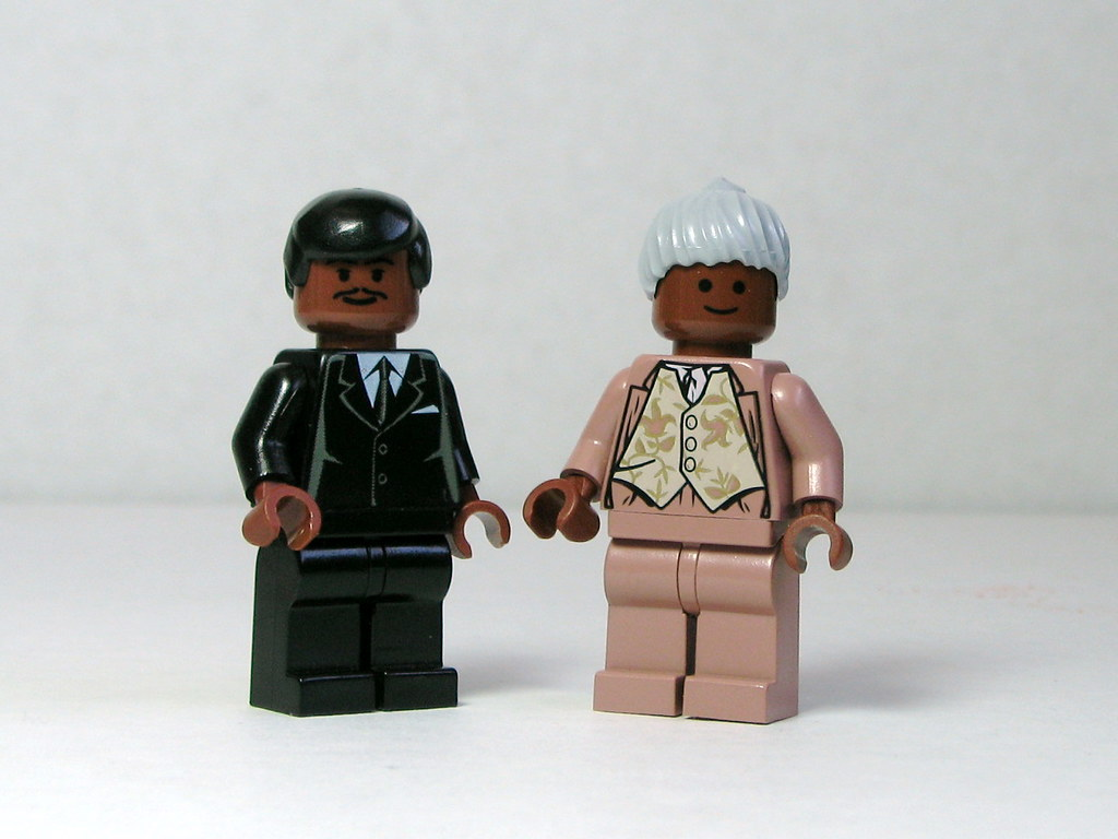 Martin Luther King Jr And Rosa Parks Icons Of The