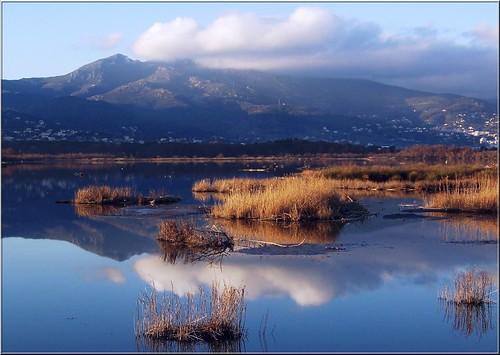 Effet miroir marie flickr for Miroir 3 pans