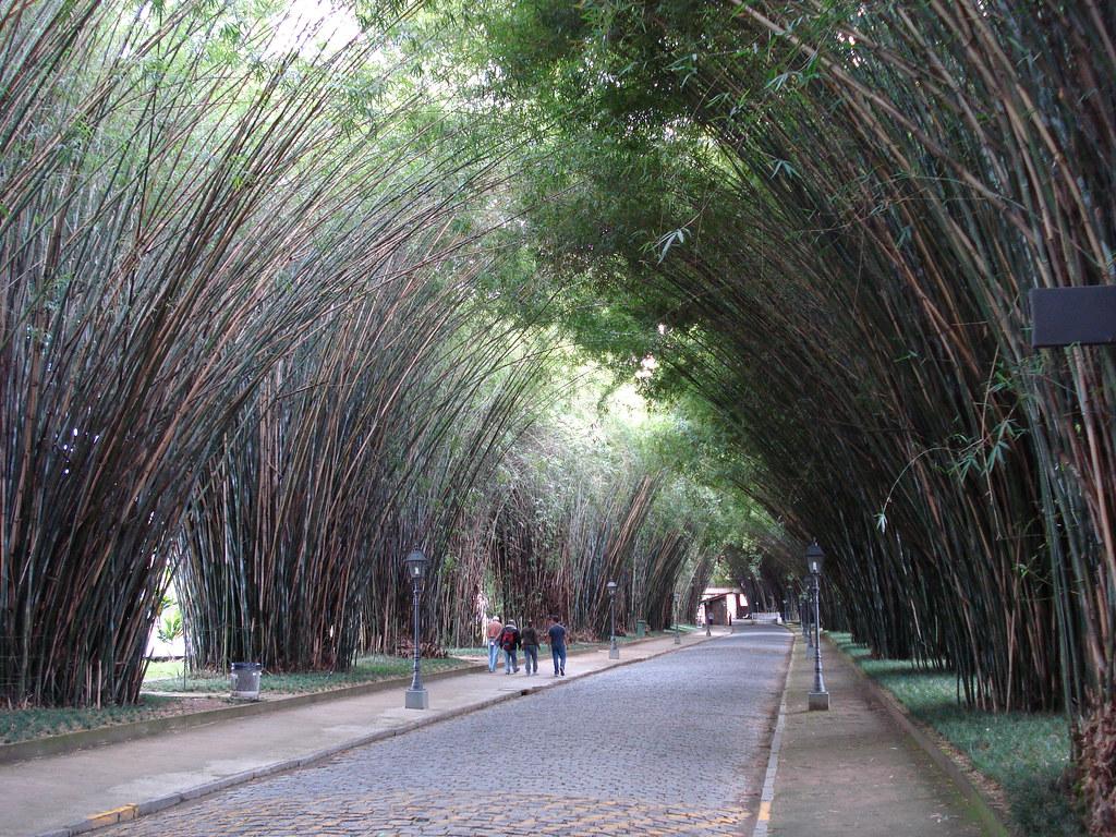 As curvas de copacabana no corpo - 2 part 4