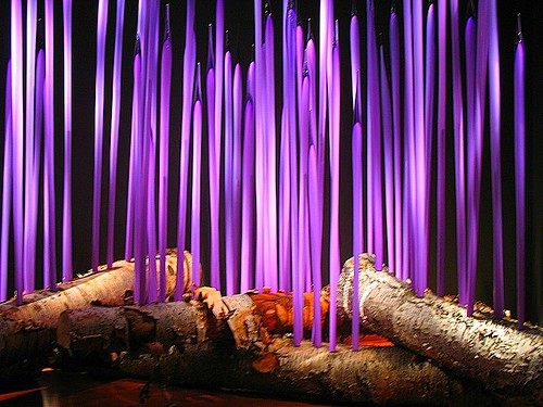 "Chihuly blown glass:  ""The Glass Forest"" 