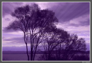 Storm over Croton, shot through a piece of wavy purple acetate taped to the lens | by mcudeque