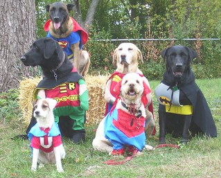 Superheros! | by barriebarrie