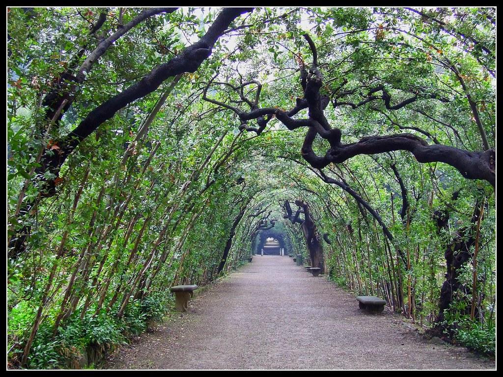 Nel giardino di boboli flickr - Giardino di boboli firenze ...