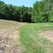 justin trails new 2