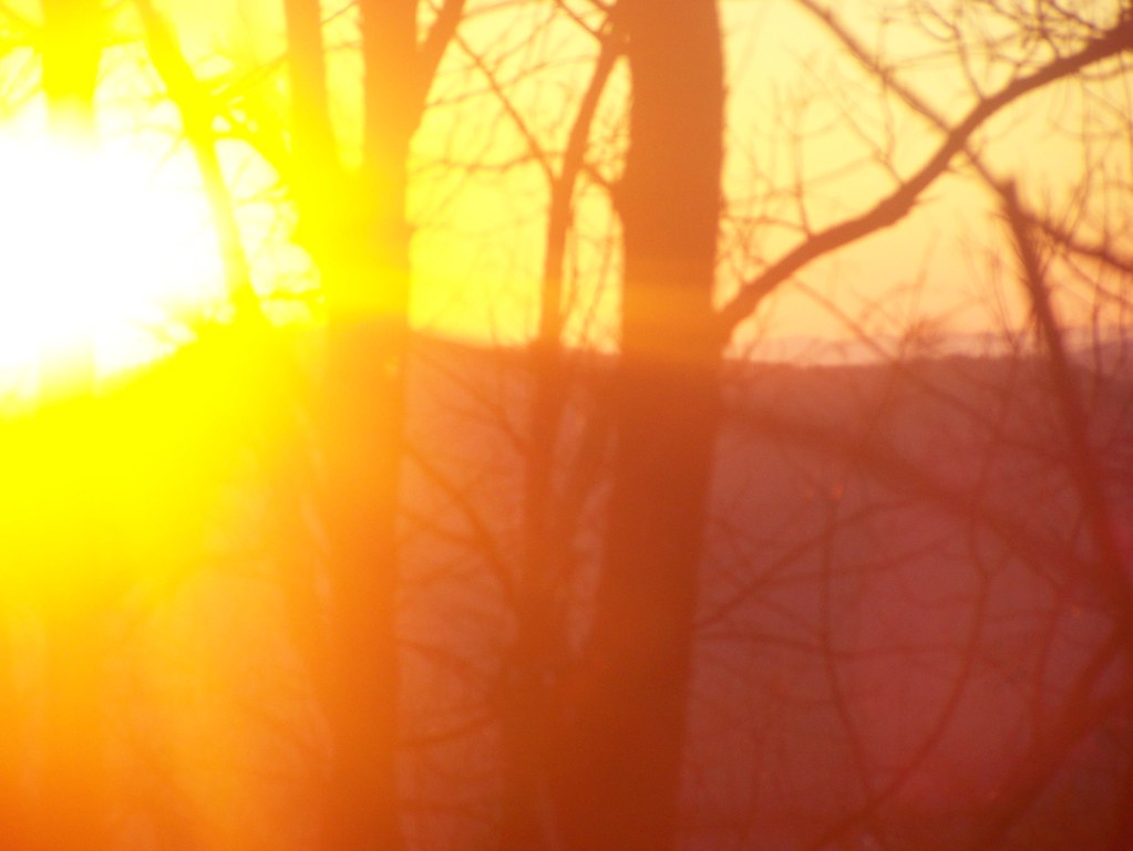 sunset through the trees fouche gap rome ga winter 20 flickr