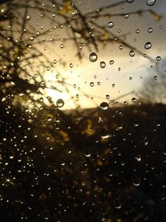 Rain drops on my window | by angee09