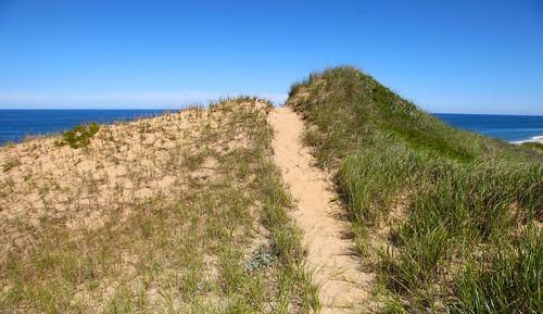 Guide to Truro Beaches in Cape Cod, MA - WeNeedaVacation.com