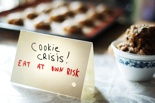Cookie Crisis! | by Kim Smith-Miller