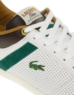 Lacoste Tribute Collection | by tennis buzz