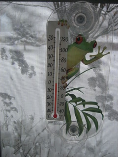 30 degrees 3/8/08 | by authorwannabe