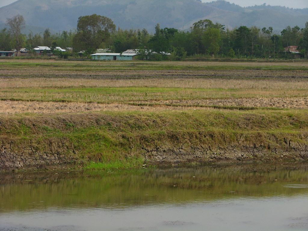Pond wall improper design manipur pond embankments for Design of pond embankment