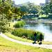 duck pond, Deering Oaks Park, Portland, Maine