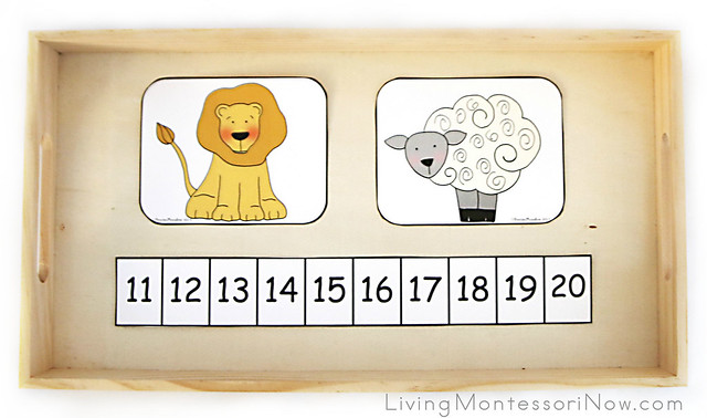 Lion and Lamb Squeeze Number Game