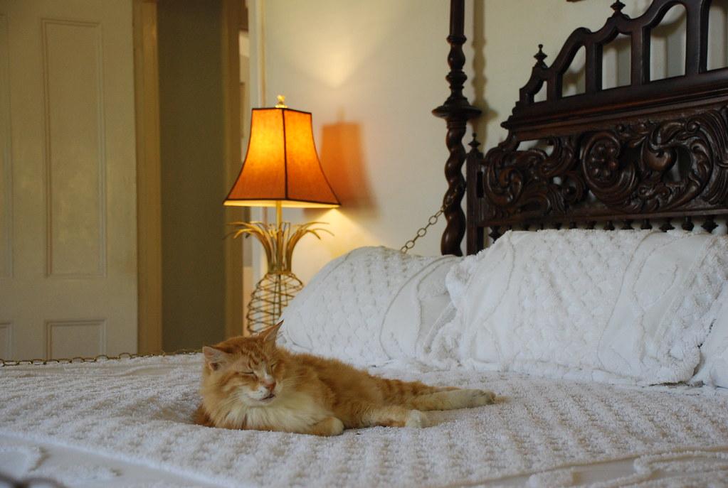 Key West Bed Breakfast Inns