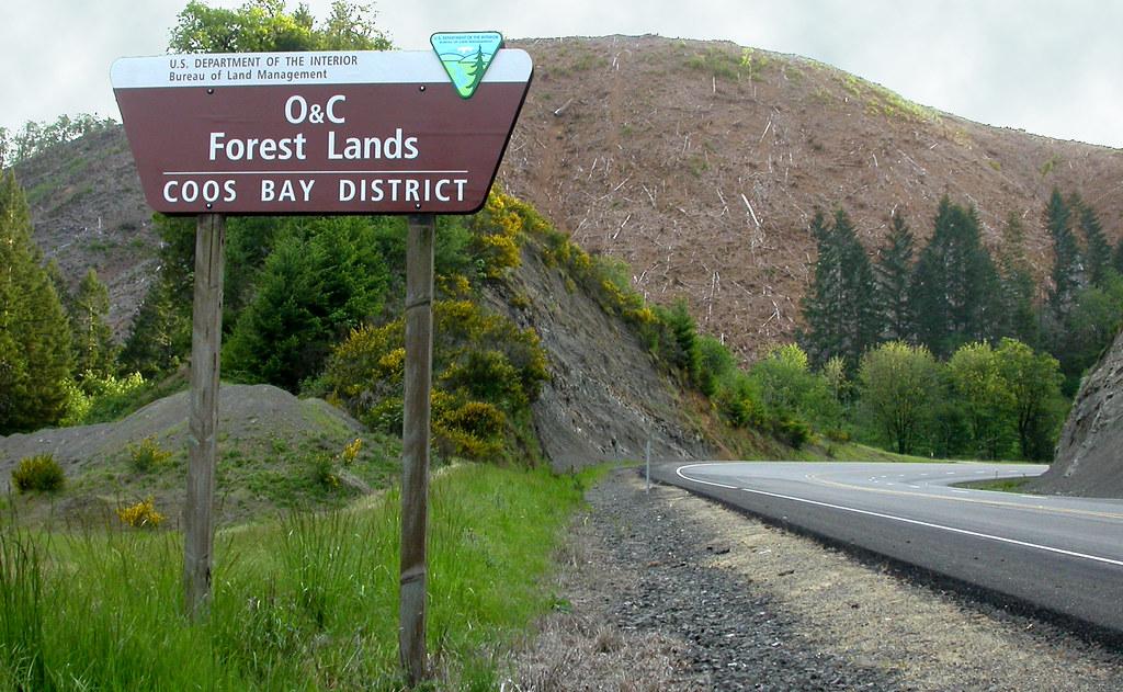 O c forest lands bureau of land management o c lands for Bureau land management