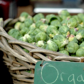 swanton farm's organic brussels sprouts | by jen_maiser