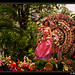 (46) Festa da Flor 2008 - Madeira Flower Festival (Funchal, Madeira,