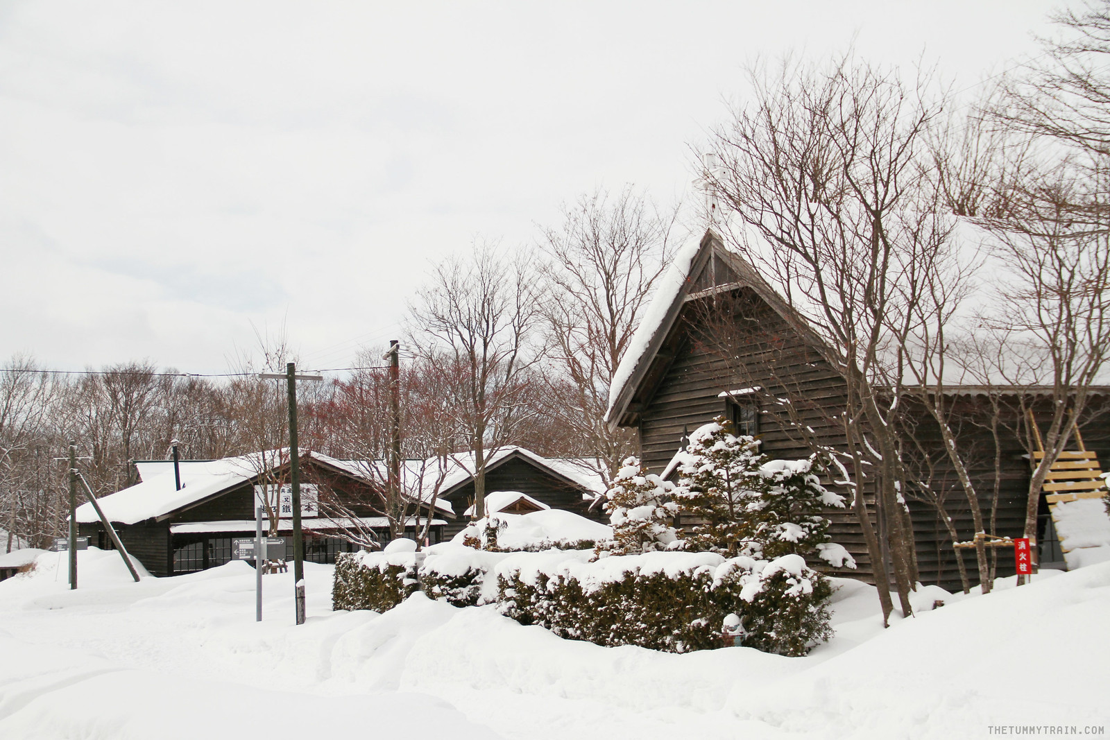 32072491164 ba4126f57a h - Sapporo Travel Diary 2017: The Magical and Historical Village of Hokkaido