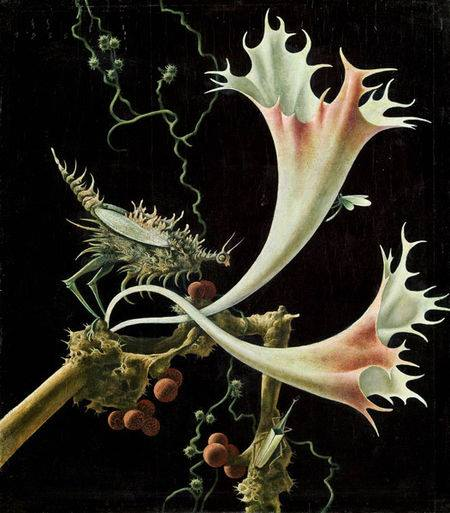 Franz Sedlacek, blossoms and insects 1935