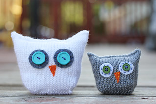 Knitted Owls | by shutterboo502
