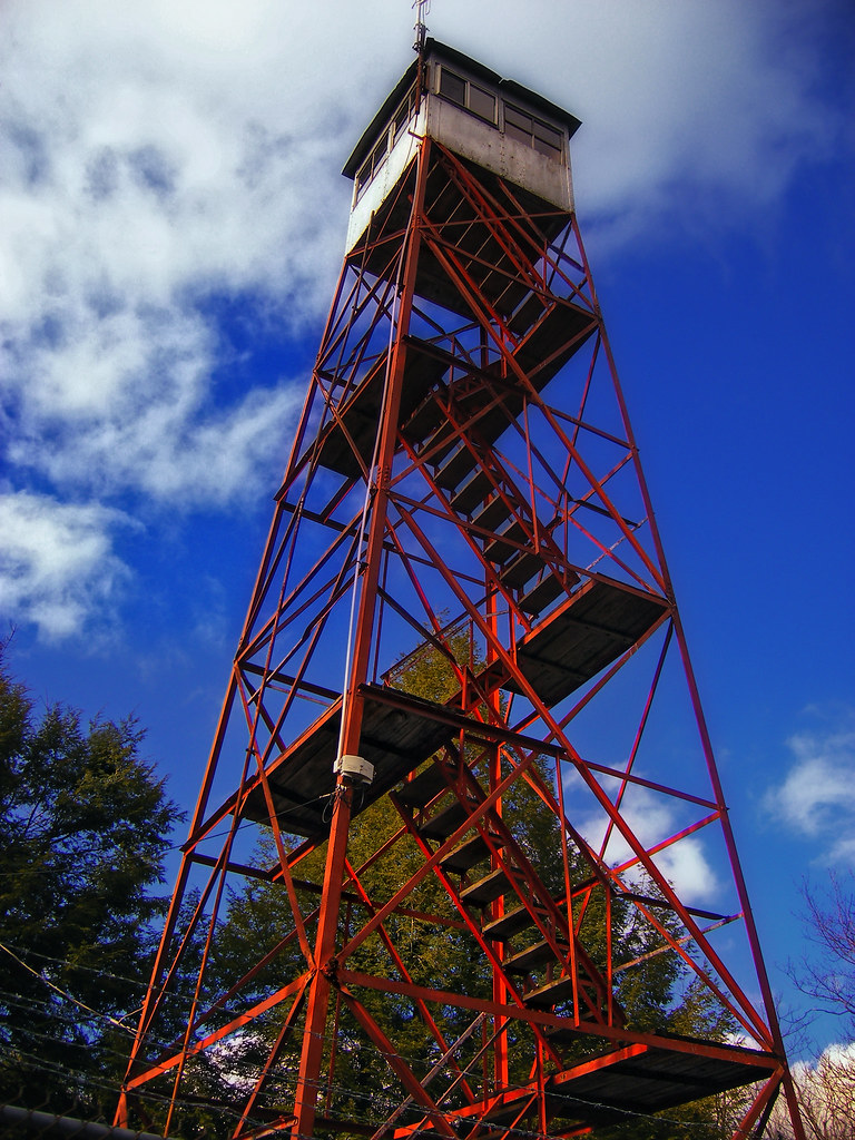 Watchful   Stony Point Fire Tower, Hickory Run State Park ...