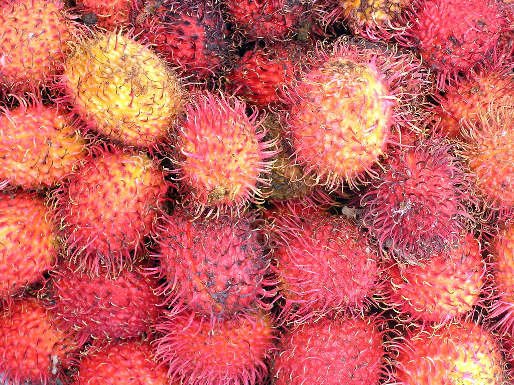 The Spiky Fruit Called The Durian Otherwise Known As The King Of ...