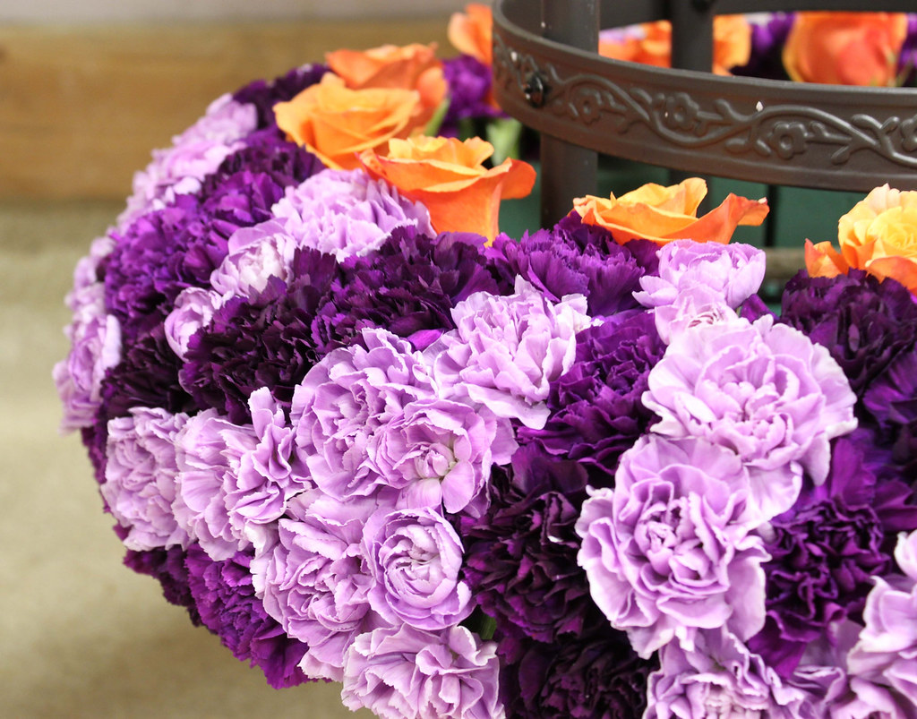Purple flowers carol caggiano aifd pfci purple with to flickr purple flowers carol caggiano aifd pfci by flower factor izmirmasajfo