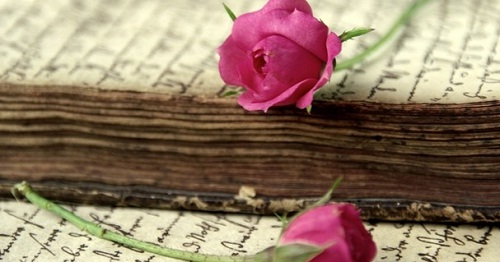 Books And Flowers Love And Emotions Www Sensaklub Hr
