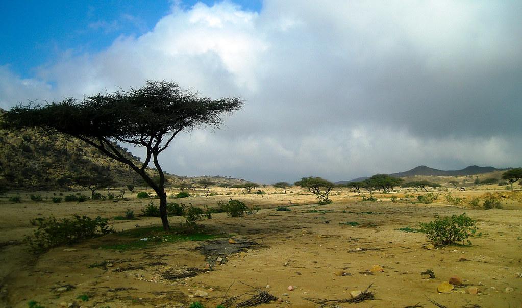 sudan - photo #25