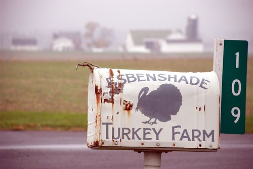 Esbenshade Turkey Farm Ronks Lancaster County Pennsylvania Fog Mailbox 109 Farm Barn Silo Field 31836 | by Dallas Photoworks