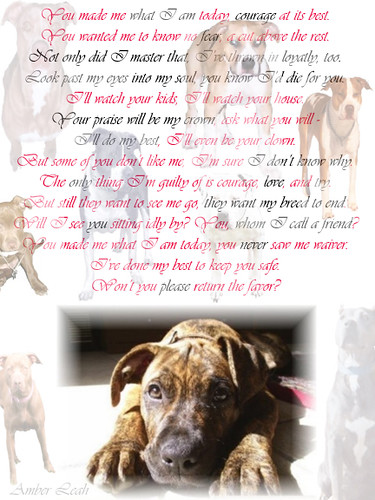 the problem with breed specific legislation The problem with breed specific legislation the time has arrived, many say, for restricting the presence of- and even eliminating- certain breeds of dogs.