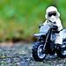 Motorbiker Scout