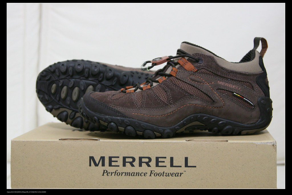 Merrell Women S Dassie Buckle Slip On Shoe Lakewood Ohio